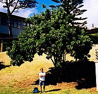 John at the tree in early 2002.
