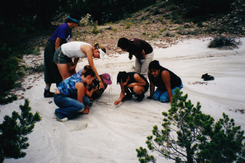Group Tracking
